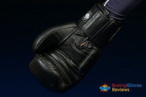 Twins Special Thai Boxing Gloves BGVL 3 Review