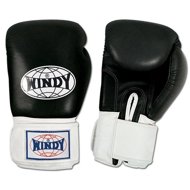 windy muay thai boxing gloves review