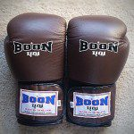 Top 10 Best Boxing Gloves photo