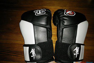 The best boxing gloves for training