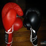Ring to Cage C17 Boxing Gloves Review photo