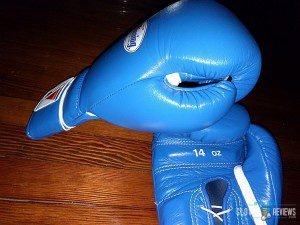 Winning Boxing Gloves MS-500