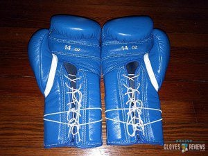 Winning MS-500 Gloves Review