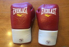 Everlast MX Professional Fight Gloves Review