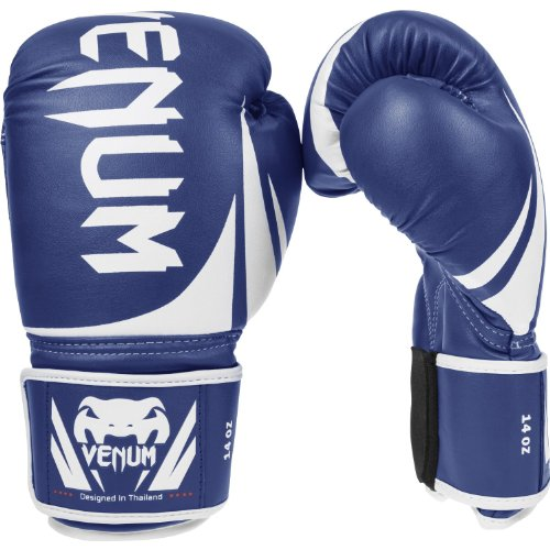 The Best Beginners Boxing Gloves - Venum Challenger 2.0 Boxing Gloves